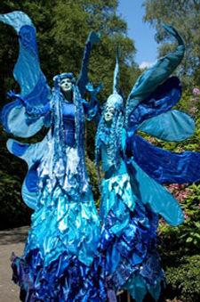 medusa-blauwe-elfjes-1.jpg