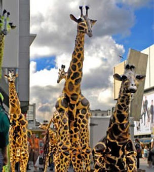 pavana_giraffe_edited.jpg
