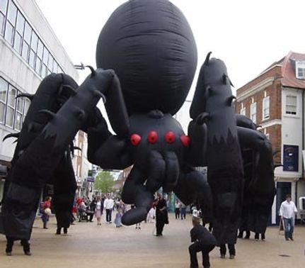 NWSI-spider.jpg