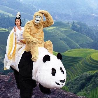 Panda 350 x 350.jpg