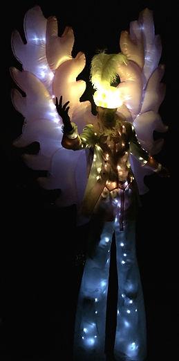 echassier lumineux 2 .jpg