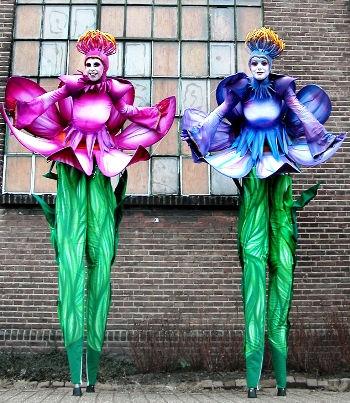 vantazia lotusssss 350 x 403.jpg