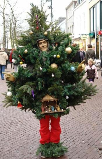 levend kerstboompje groen 350  545.jpg