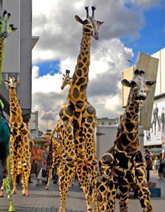 pavana_giraffe.jpg