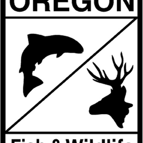 Three Cited For Shooting A Bull Elk In ODFW Wildlife Area