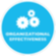 OrganizationalEffectiveness_Text.png