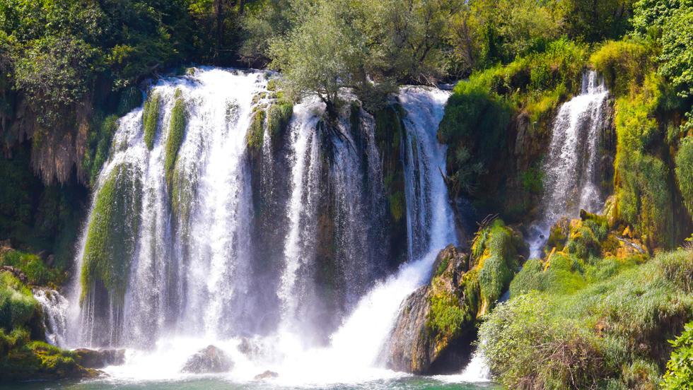 Bosnia Boi 7.jpg