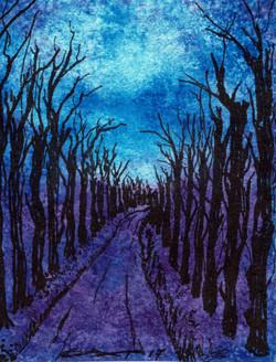 Dark Trail