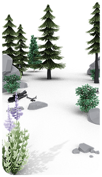 plants_in_scene_web.png