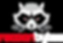 racoonbytes_logo.png