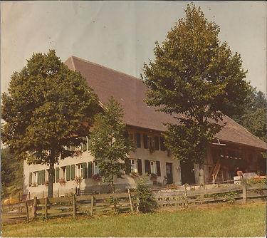 Schwarzwaldhof Schlegelhansenhof