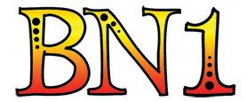 BN1-logo.jpg