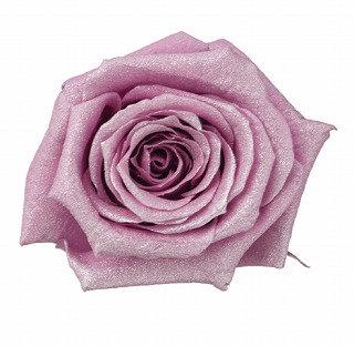 FL056-14 Sparkling Baby Rose