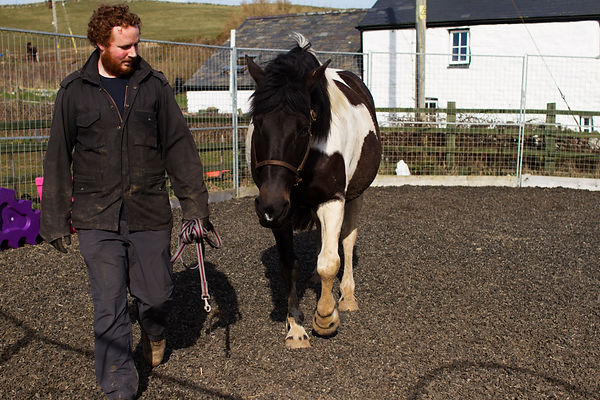 Iain Crosbie training a horse.jpg