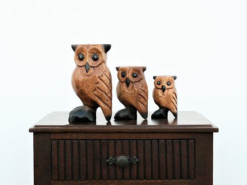 Wood Carved Owl Set