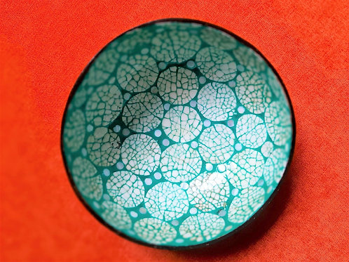 Turquoise Coconut Bowl Set