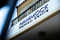Hammock Thai Opening-122(1).jpg