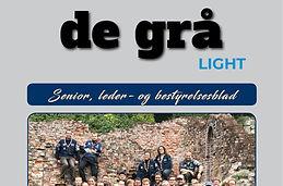 De_grå_light.jpg