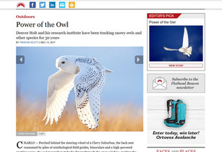 Flathead Beacon Article: Power of the Owl