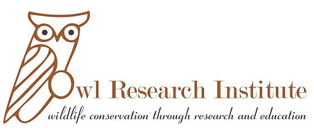 Owl Research Institute. Wildlife conservation through research and education.