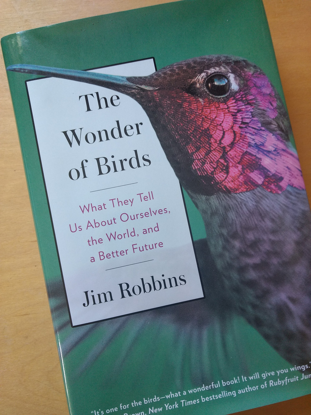Jim Robbins, The Wonder of Birds