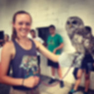 owl research institute intern, owl volunteer, owl intern, owl research, owl studies, owl workshop, owl summer
