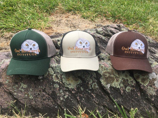 Snowy Owl caps are here! Get 'em while they last!
