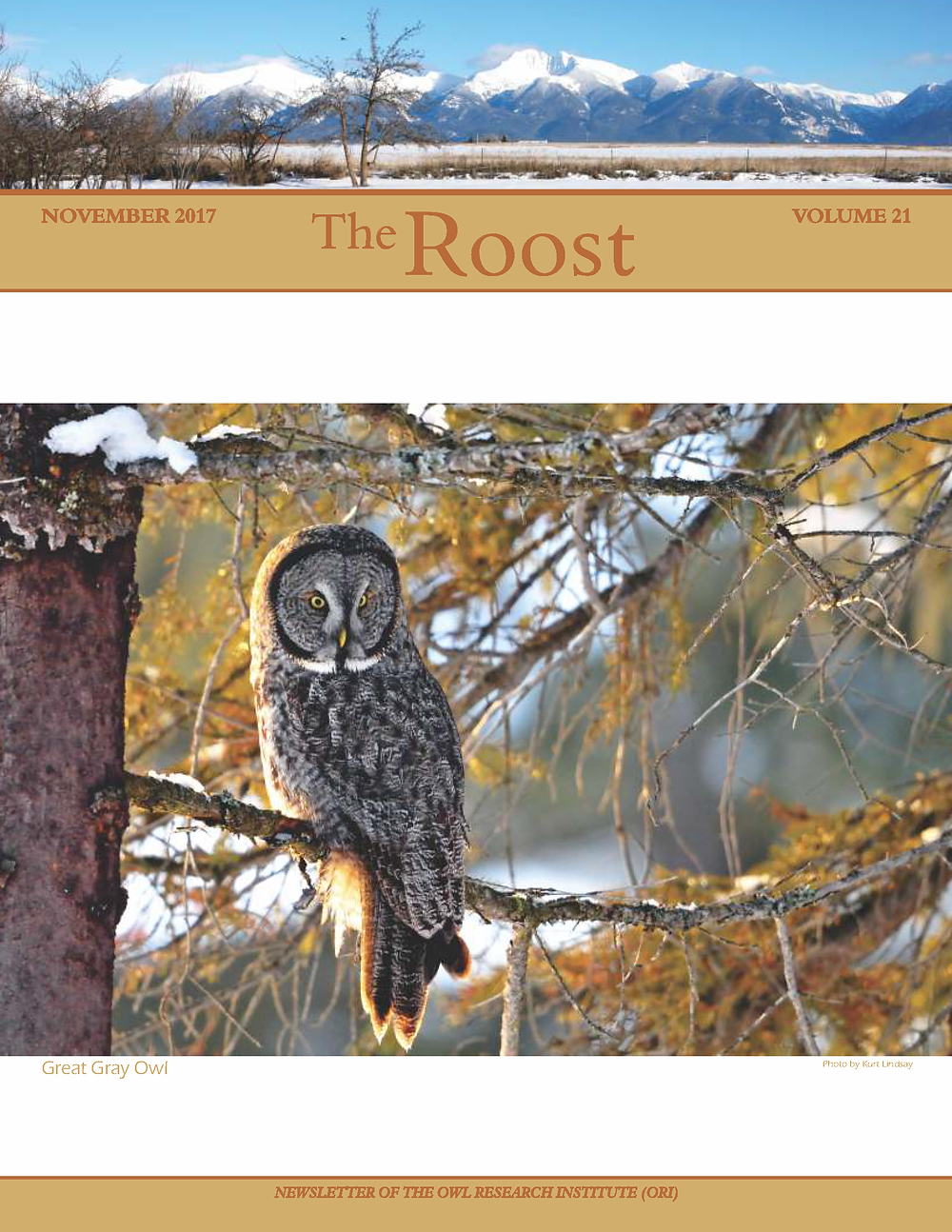 The Roost 2017, Annual Newsletter of the Owl Research Institute