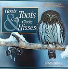 great horned owl, great horned owl hoot, great horned owl sound, great horned owl song, great horned owl audio