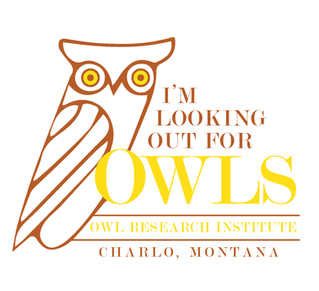 "A New Way to ""Look Out for Owls"" Coming Soon!"