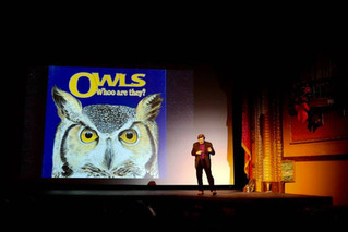 Owls of Montana - Bozeman, MT