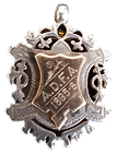 1895 Medal.png
