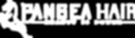 WHITE Pangea 2019 logo (1).png