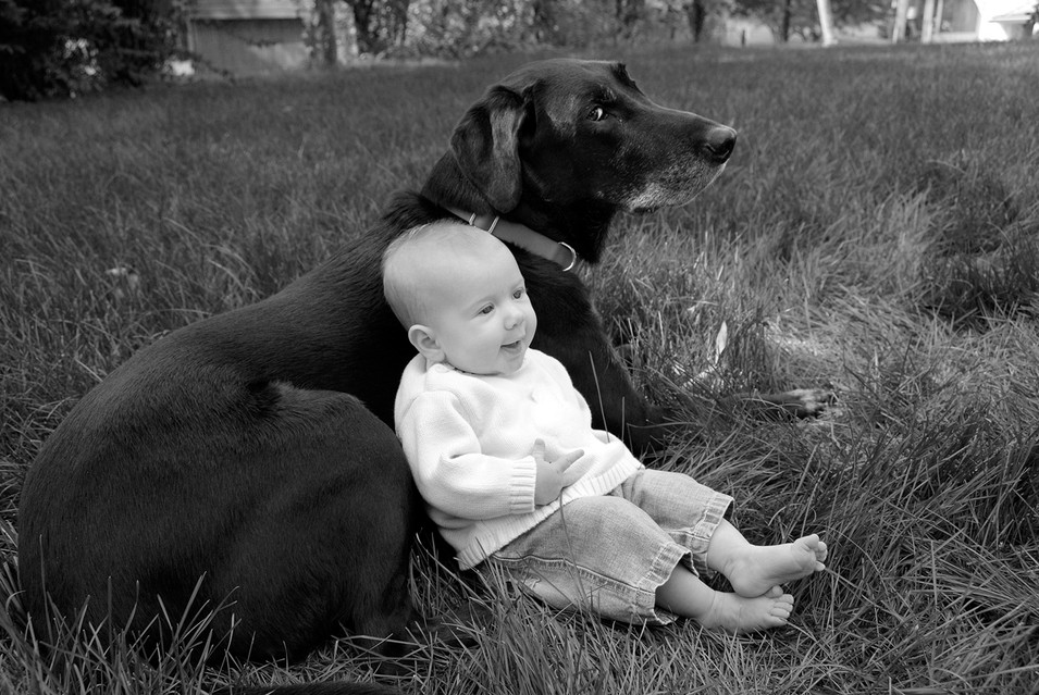 Baby and dog portrait