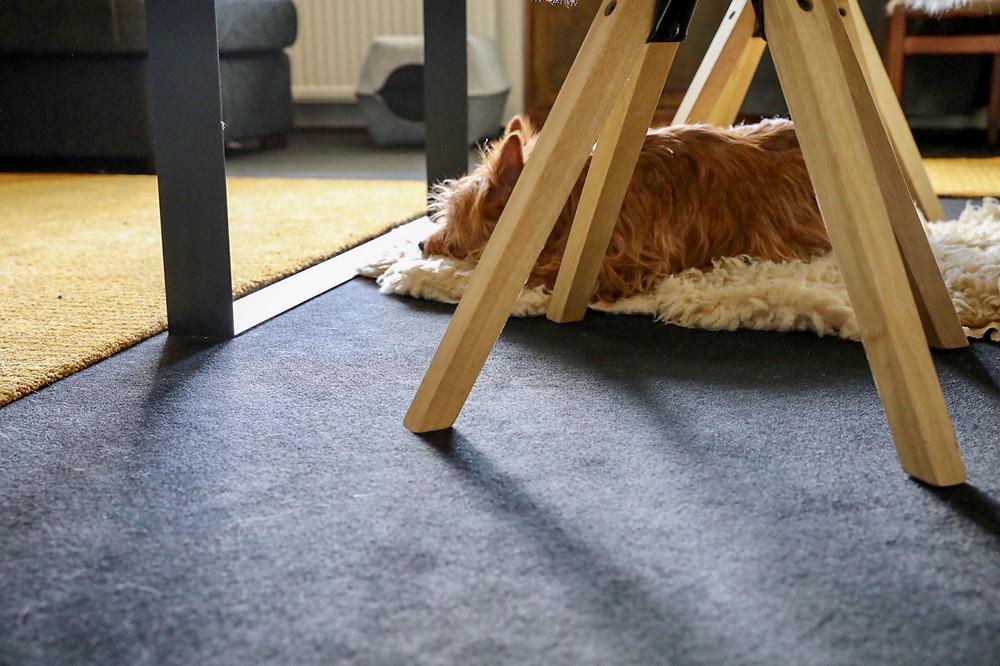 Messumatto on jalan alla mukava ja väliaikaisessa käytössä parempi vaihtoehto halvalle muovimatolle
