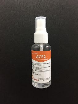 ACE2.JPG