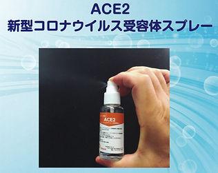 ACE2%E7%94%BB%E5%83%8F_edited.jpg