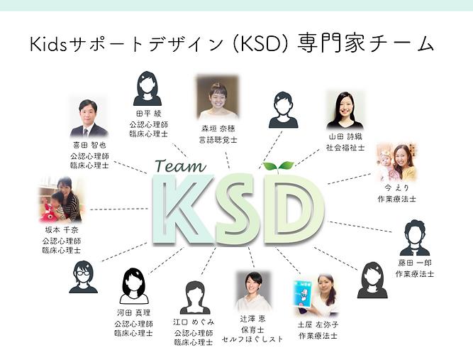 5専門家チーム派遣Pgm_member1.png