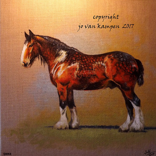Shire horse, original painting.