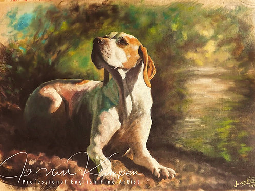 English Pointer, original oil painting.