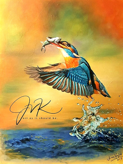 Kingfisher and splash!