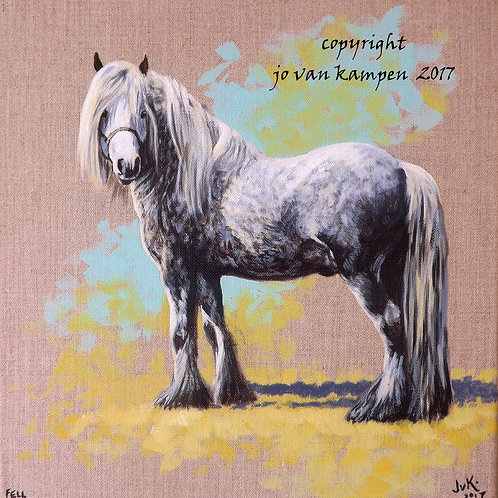 Grey Fell pony, original painting.