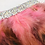 Thumbnail: Las Vegas Feather and Rhinestone Dog Bandana