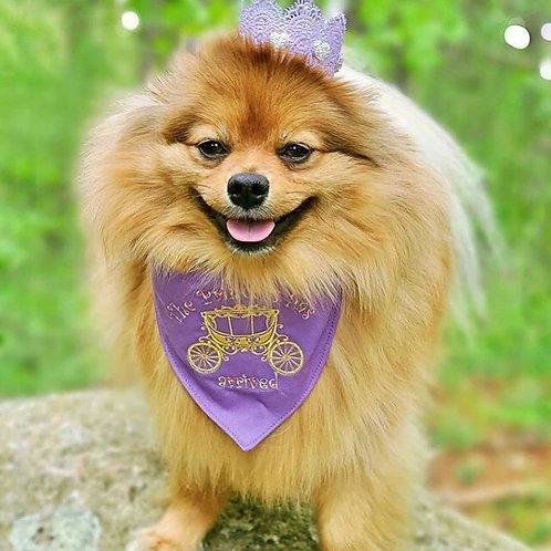 The Princess Has Arrived Embroidered Dog Bandana