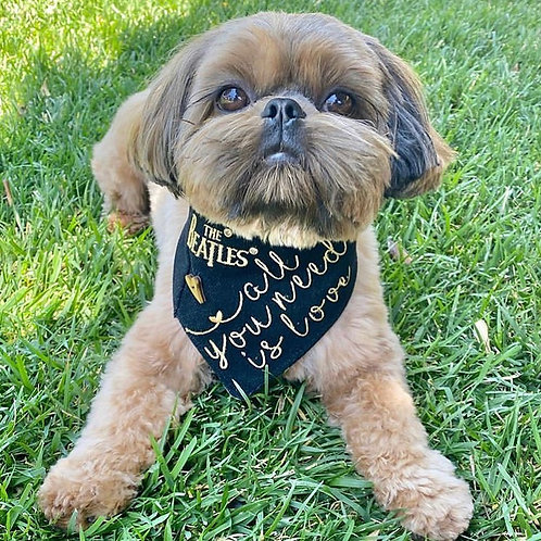All You Need Is Love Embroidered Dog Bandana