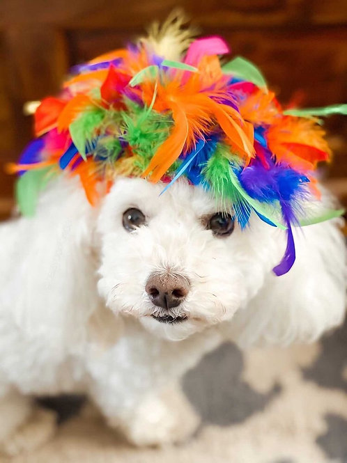 Gay Pride 2021 Feather Hat
