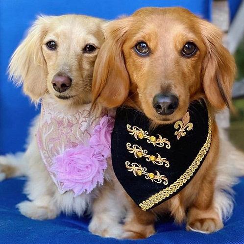 Hussar Uniform Dog Bandana
