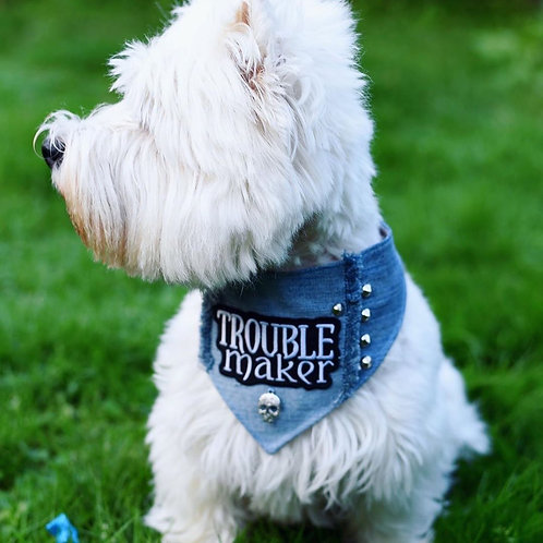 Trouble Maker Dog Bandana