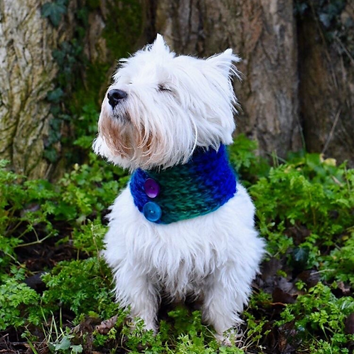 Blue Lagoon Hand Knitted Dog Snood