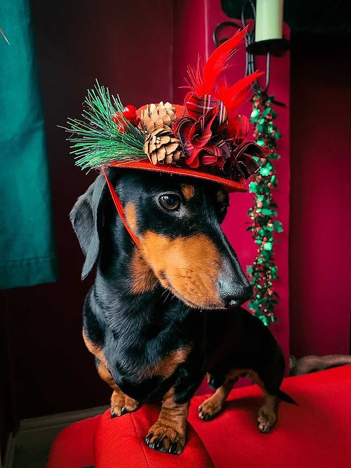Christmas Dog Hat